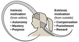 Internal vs External Motivation