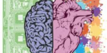 Brain and heart, both important